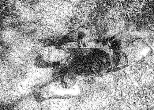 Erick Joel Díaz, de 22 años, apodado Liro Boy. quien recién había sido deportado de Estados Unidos, fue encontrado asesinado a balazos en el cantón La Noria, municipio de Jiquilisco, departamento de Usulután.